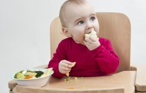 1100_baby_led_weaning